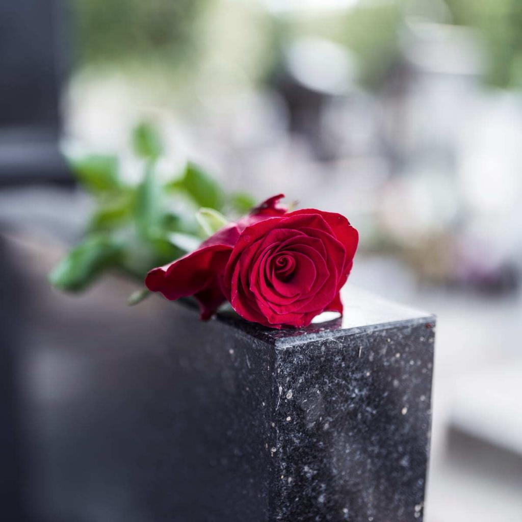 wrongful death lawyer bronx