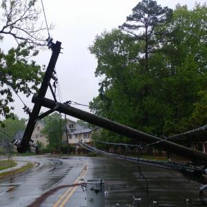 Downed Power Line Accident